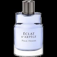 تصویری از Eclat d'Arpege Pour Homme