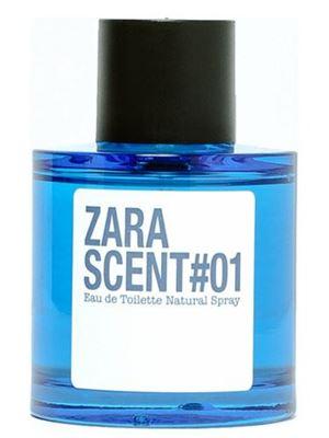 Zara Scent #1