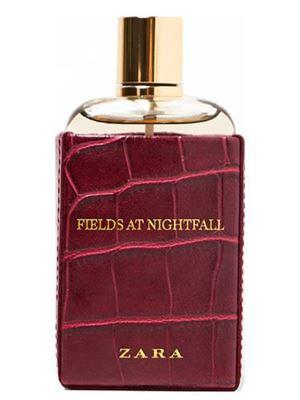 Fields at Nightfall