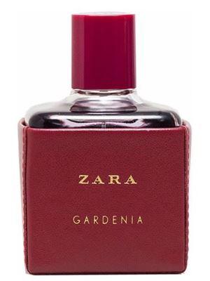 Zara Gardenia 2016