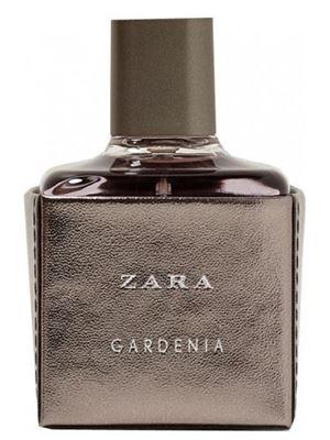 Zara Gardenia 2017