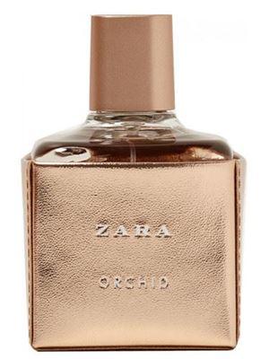 Zara Orchid 2017