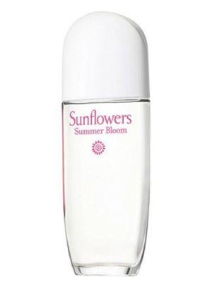 Sunflowers Summer Bloom